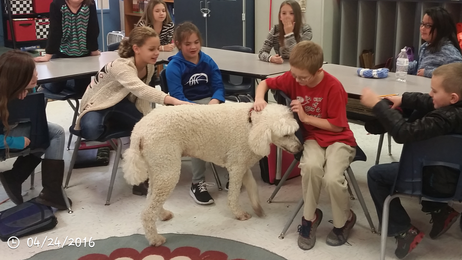 Students interacting with a service dog.